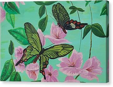 Butterflies In Flight Canvas Print by Martha Mullins