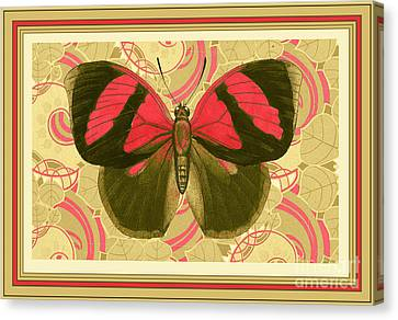 Butterfly 27 Canvas Print