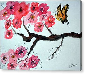 Butterfly And Blossoms Canvas Print by Warren Thompson