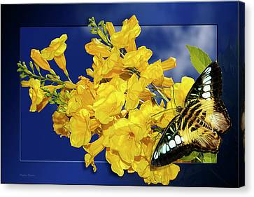 Butterfly And Yellow Bells Canvas Print