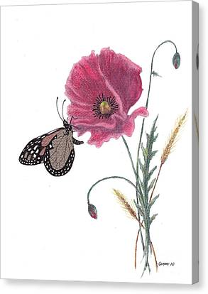 Canvas Print featuring the painting Butterfly Dreaming by Stanza Widen