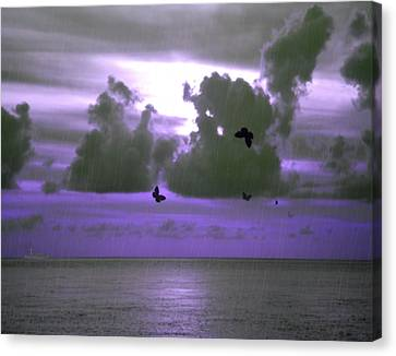 Butterfly Dreams And A Purple Sky Canvas Print by Rosalie Scanlon