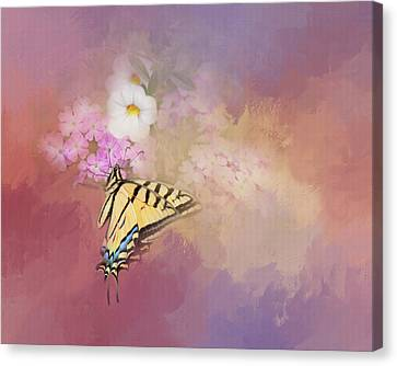 Canvas Print featuring the photograph Butterfly Dreams by Theresa Tahara