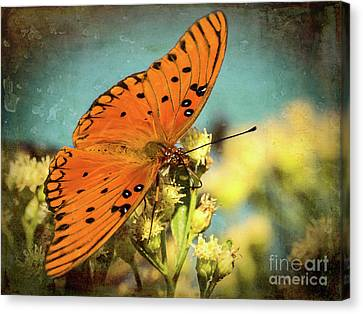 Butterfly Enjoying The Nectar Canvas Print