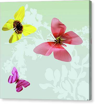 Butterfly Floral  3 Canvas Print by Debra     Vatalaro