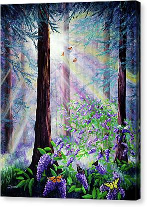 Butterfly Grove In Redwood Forest Canvas Print