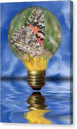 Butterfly In Lightbulb Canvas Print by Shane Bechler