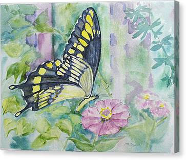 Butterfly In My Garden Canvas Print by Judy Loper