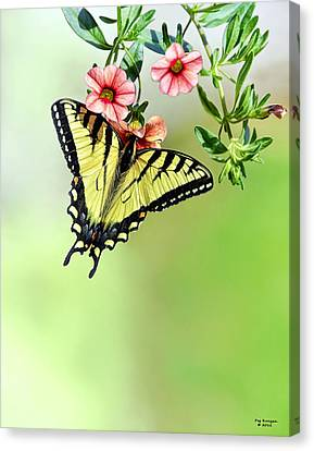 Butterfly In My Garden Canvas Print