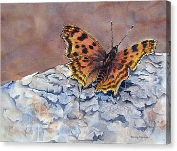 Butterfly-in-the-old-growth-forest Canvas Print by Nancy Newman