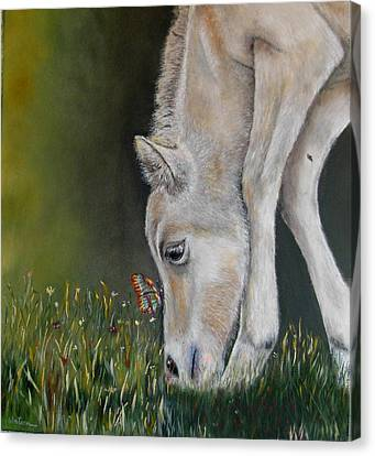 Canvas Print featuring the painting Butterfly Kiss by Ceci Watson