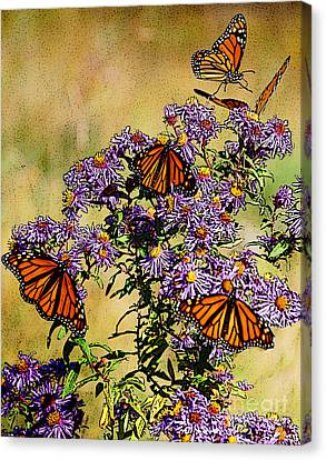 Daisy Canvas Print - Butterfly Party by Diane E Berry