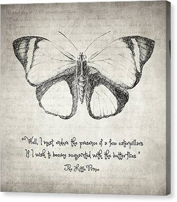 Butterfly Quote - The Little Prince Canvas Print by Taylan Apukovska