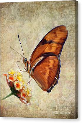 Canvas Print featuring the pyrography Butterfly by Savannah Gibbs
