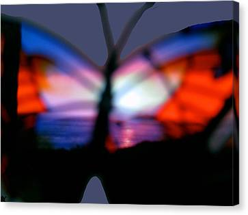 Butterfly Sunsets Collection  Canvas Print by Debra     Vatalaro