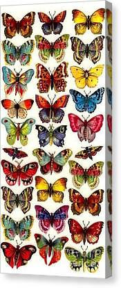 Canvas Print featuring the painting Butterflys by Pg Reproductions