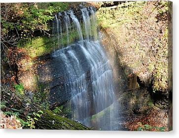 Buttermilk Falls Natural Area Canvas Print by Shelley Smith