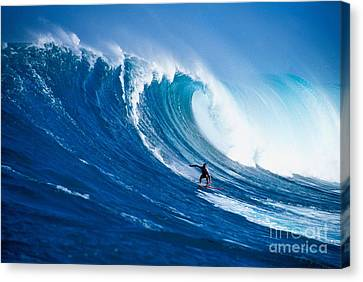 Buzzy Kerbox Surfing Big Canvas Print by Erik Aeder - Printscapes