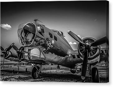 Bw B17 Flying Fortress Canvas Print by Chris Smith