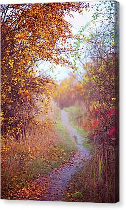 By Autumn Path 2 Canvas Print by Jenny Rainbow