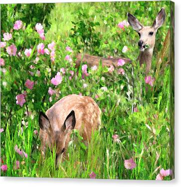 By Mother's Side - Impressionist Doe And Fawn Digital Painting Canvas Print by Rayanda Arts