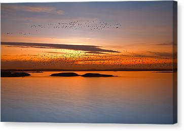 By Sunset Canvas Print by Piotr Krol (bax)