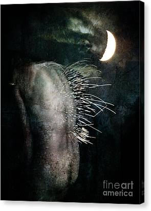 By The Light Of The Moon Canvas Print by Nada Meeks