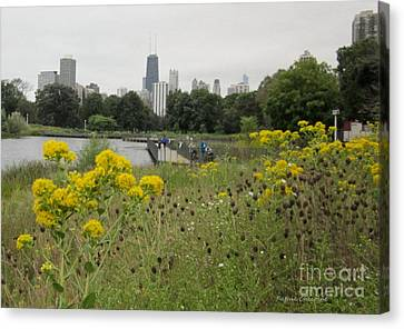 By The Lincoln Park Pond Canvas Print by Kathie Chicoine