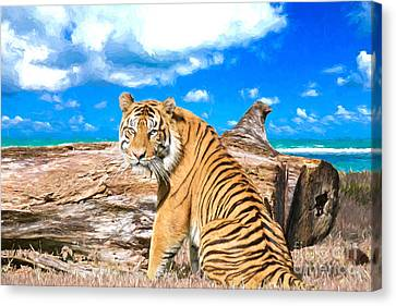 By The Sea Canvas Print by Judy Kay