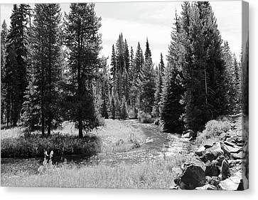 Canvas Print featuring the photograph By The Stream by Christin Brodie