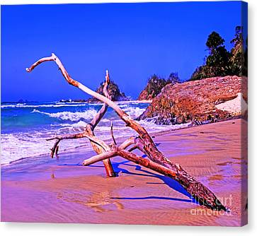 Byron Beach Australia Canvas Print by Chris Smith