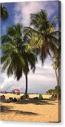 Art print POSTER Coconut Palms on Kalapana Beach