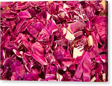 Cabbage 639 Canvas Print by Michael Fryd