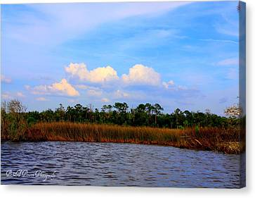 Cabbage Palms And Salt Marsh Grasses Of The Waccasassa Preserve Canvas Print by Barbara Bowen