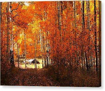 Cabin Among The Aspen Canvas Print by Alan Socolik