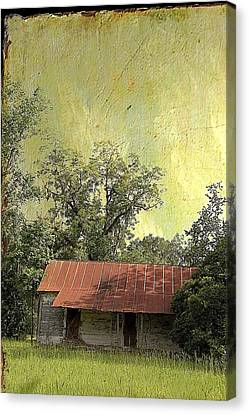 Country Scene Canvas Print - Cabin Fever by Jan Amiss Photography