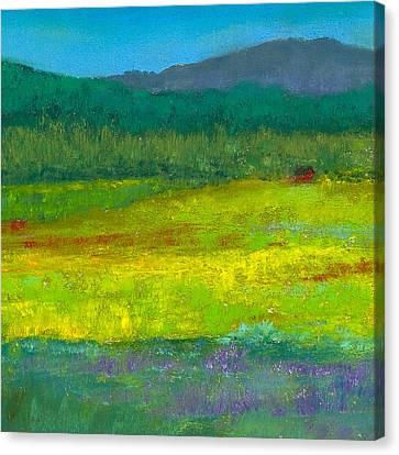 Cabin In The Meadow Canvas Print by David Patterson