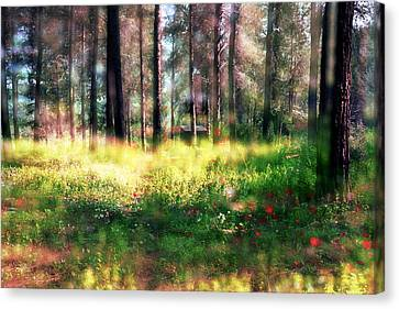 Canvas Print featuring the photograph Cabin In The Woods In Menashe Forest by Dubi Roman