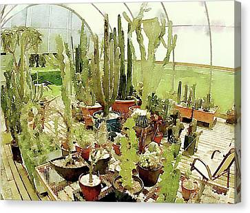 Cacti In The Greenhouse Canvas Print by Susan Maxwell Schmidt