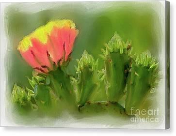 Canvas Print featuring the painting Cactus Flower On A Cactus Plant Ap by Dan Carmichael