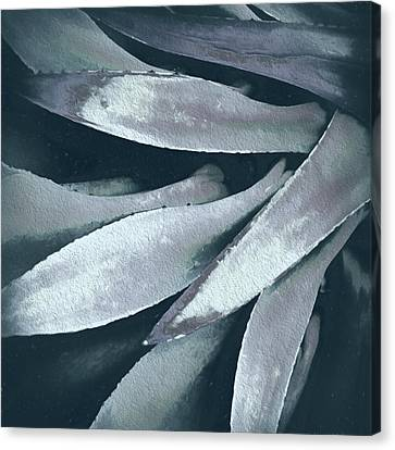 Canvas Print featuring the photograph Cactus In Blue And Grey 2 by Julie Palencia