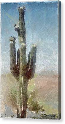 Cactus Canvas Print by Jeff Kolker