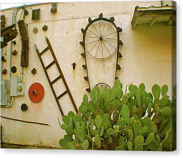 Canvas Print featuring the photograph Cactus by Sheep McTavish