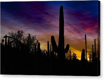 Desert Sunset Canvas Prints Page 6 Of 35 Fine Art America