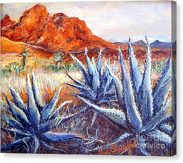 Cactus View Canvas Print