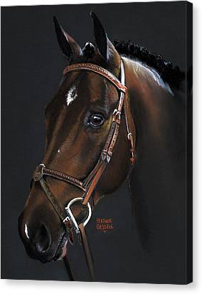 Jumping Horse Canvas Print - Cadence by Heather Gessell