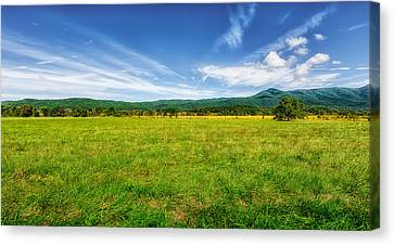 Tennessee Historic Site Canvas Print - Cades Cove Meadow by Frank J Benz