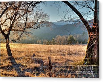 Canvas Print featuring the photograph Cades Cove, Spring 2017 by Douglas Stucky