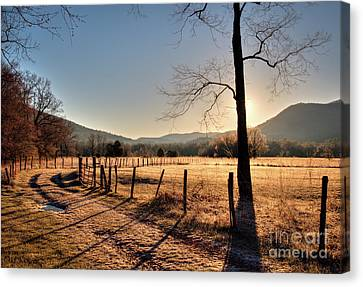 Canvas Print featuring the photograph Cades Cove, Spring 2017,i by Douglas Stucky