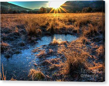 Canvas Print featuring the photograph Cades Cove, Spring 2017,ii by Douglas Stucky